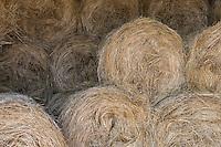 Europe/France/Midi-Pyrénées/46/Lot/Lacave: Rouleaux de fourrage à la ferme de Gisèle Lagarrigue éleveuse d'agneaux fermiers du quercy label rouge