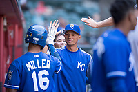 Kansas City Royals outfielder Anderson Miller (16) congratulates MJ Melendez, who hit a single while wearing Miller's #16 jersey, during an Instructional League game against the Arizona Diamondbacks at Chase Field on October 14, 2017 in Scottsdale, Arizona. (Zachary Lucy/Four Seam Images)