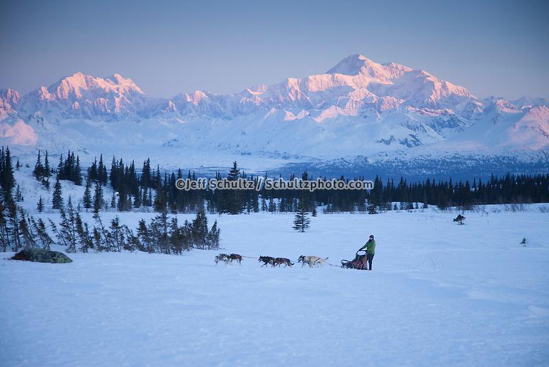Recreational dog mushing in Denali State Park   Alaska Range and Mt. Mckinley background.  Spring<br /> MR 2012-04 &amp; 05