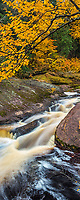 Ottawa National Forest, Michigan: The Black River in fall, Black River Recreation Area, Upper Penninsula