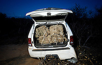 A jeep sits full of marijuana after an attempted escape from Border Patrol into the desert long Highway 286 and 86 in Tucson, Arizona, Friday, June 12, 2009. The car had an estimated 500 pounds of marijuana in what is considered a small load...PHOTOS/ MATT NAGER
