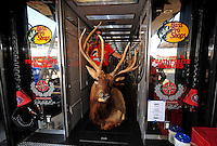Sept. 28, 2008; Kansas City, KS, USA; A crew member for Nascar Sprint Cup Series driver Martin Truex Jr moves an Elk head out of the car hauler prior to the Camping World RV 400 at Kansas Speedway. Mandatory Credit: Mark J. Rebilas-