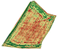 Drone used to map plant health - oil seed rape
