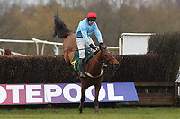Race winner Penmore Mill ridden by Mr T Ellis in jumping action in the William Bulwer-Long Memorial Novices Fox Hunters Chase