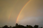 Rainbow over the rainforest