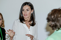MADRID, SPAIN-July 01: Queen Letizia attends a meeting with Spanish Association Against Cancer at the AECC office in Madrid, Spain. July 01, 2019.  ***NO SPAIN***<br /> CAP/MPI/RJO<br /> ©RJO/MPI/Capital Pictures