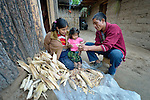 Jovita Guzman, a Maya Mam woman, pulls the grain off of corn at her home in Comitancillo, Guatemala, with help from her two-year old daughter Marilisa and her husband Maximilian Porfirio Garcia.