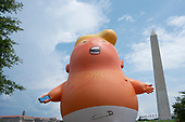 "Members of the protest group Code Pink set up the ""Baby Trump"" blimp in Washington D.C., U.S. on July 4, 2019, to protest United States President Donald J. Trump's Salute to America speech.  The group believes the president's participation in 4th of July celebrations is politicizing a non-political holiday.<br /> <br /> Credit: Stefani Reynolds / CNP"