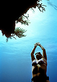 CAYMAN ISLANDS, Grand Cayman, Canadien National freediver practices her ascent in the Caribbean Sea
