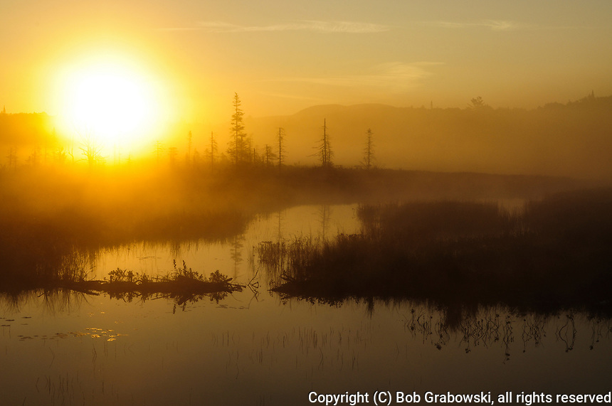 The Sun Breaking Thru The Fog Near South Lake In The Adirondack Mountains Of New York State