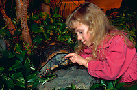 Girl playing with her unusual pet - a Red Foot Tortoise.