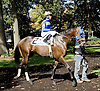 Forgotten Knot before The DTHA Governors Day Stakes at Delaware Park on 10/20/12