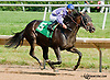E. T. Indy winning at Delaware Park on 7/15/13