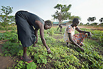 Women work at the Multi Agricultural Jesuit Institute of Sudan (MAJIS), an agricultural school located outside Rumbek, South Sudan.