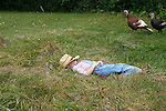 A country boy laying in the grass with turkeys