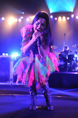 HOLLYWOOD FL - JANUARY 17 : Amy Lee of Evanescence performs at Hard Rock live held at the Seminole Hard Rock hotel & Casino on January 17, 2012 in Hollywood, Florida. © Mpi04 / MediaPunch Inc.