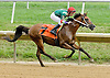 Chachie winning at Delaware Park on 8/11/12