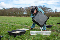 Fertiliser spreader tray test - Lincolnshire, March