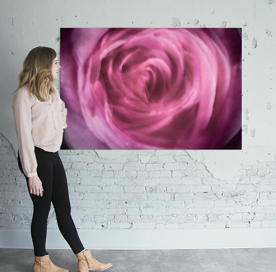 macro lens painting pink rose swirl