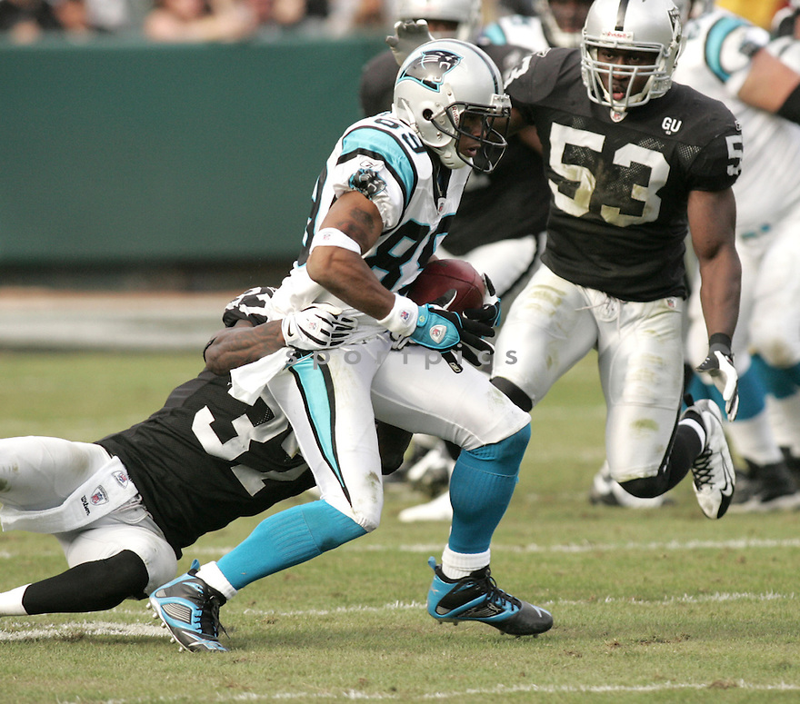 STEVE SMITH, of the Carolina Panthers in action against the Oakland Raiders during the Panthers game  in Oakland, California  on November 9, 2008..Panthers win 17-6