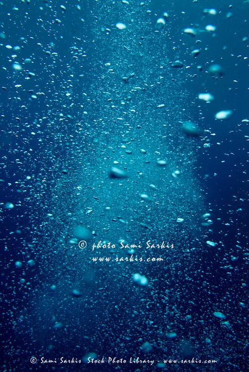 Bubbles underwater produced by scuba divers.