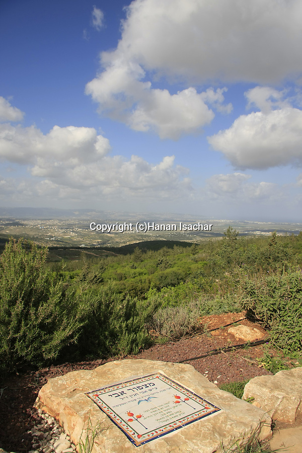 Israel, Lower Galilee, Avi lookout at Shkhanya forest