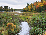 Colorful Autumn Foliage And Wetlands Along Highway 41 In The Baraga State Forest Area, Upper Peninsula, Michigan, USA : Low Res File - 8X10 To 11X14 Or Smaller, Larger If Viewed From A Distance