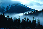 Fog bank moves through a valley near Ketchikan, Alaska.