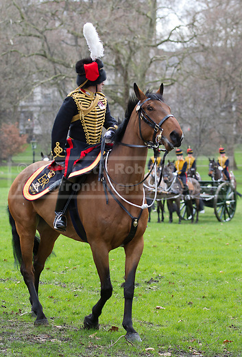 06/02/2013. London, UK. A captain and his horse are seen with members of the King's Troop, Royal Horse Artillery, are seen in Green Park after firing a 41 Gun Royal Salute marking the 61st Anniversary of the Accession of Her Majesty The Queen in London today (06/02/13). Photo credit: Matt Cetti-Roberts