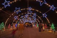 Zilker Park Trail of Lights Starry Night Tunnel