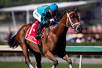 ARCADIA, CA - FEBRUARY 03: Roy H #1, ridden by Kent Desormeaux wins the Palos Verdes Stakes in a canter at Santa Anita Park on February 3, 2018 in Arcadia, California. (Photo by Alex Evers/Eclipse Sportswire/Getty Images)