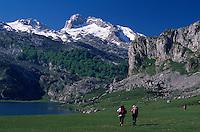 Wanderer beim  Ercina-See, Picos de Europa, Asturien,  Spanien