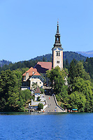 The 17th century church in the middle of Lake Bled.///L'Eglise Saint Marie de l'Assomption datant du XVIIème siècle au centre du lac de Bred.