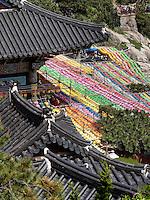 Schmuck zu Buddha's Geburtstagbuddhistischer Tempel Haedong Yonggungsa, Busan, Gyeongsangnam-do, Südkorea, Asien<br /> Decoration at Buddha's birthday, buddhist temple Haedong Yonggungsa, Busan,  province Gyeongsangnam-do, South Korea, Asia