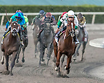 HALLANDALE BEACH, FL - MAR 3:Promises Fulfilled #10 trained Dale L. Romans with Irad Ortiz, Jr. in the irons holds the lead along the final turn on the way to winning the $400,000 Xpressbet Fountain of Youth Stakes (G2) at Gulfstream Park on March 3, 2018 in Hallandale Beach, Florida. (Photo by Bob Aaron/Eclipse Sportswire/Getty Images)