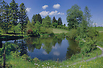 Fish pond near Forggensee lake close to Neuschwansein castle. Bavaria, South Germany.