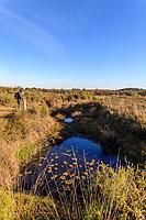 France, Vienne (86), Vouneuil-sur-Vienne, réserve naturelle nationale du Pinail, mare remplie d'eau