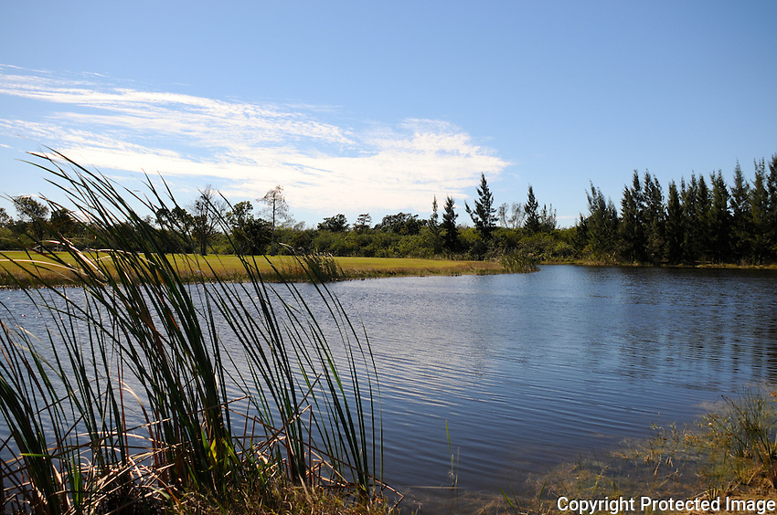 Beautiful cloud blue sky and expansive lake blend to form a picturesque  scene. Photographed at Delray Park West, Delray Beach, Florida.