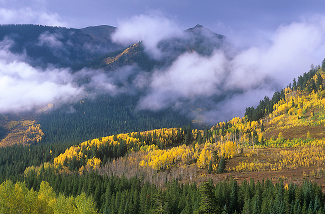 Autumn, Clearing Storm, Slate River Valley near Crested Butte, Colorado
