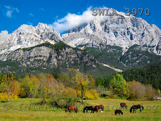 Carl, LANDSCAPES, photos, Dolomites Italy, SWLA3970,#L#