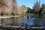 Pond in Sacramento