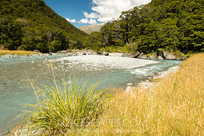 Matukituki River at Pearl Flat, Mt. Aspiring National Park, Central Otago, World Heritage Area, South Island, New Zealand