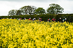 Action from Stage 3 of the 2019 Tour de Yorkshire, running 132km from Brindlington to Scarborough, Yorkshire, England. 4th May 2019.<br /> Picture: ASO/SWPix/Alex Broadway | Cyclefile<br /> <br /> All photos usage must carry mandatory copyright credit (© Cyclefile | ASO/SWPix/Alex Broadway)
