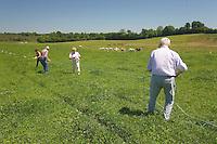 Transformation d'une prairie en parking, le travail des anciens combatants d'AFN