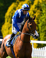 Eqtiraan ridden by Jim Crowley goes down to the start of  The British Stallion Studs EBF Cathedral Stakes (Listed)(Class 1), during Father's Day Racing at Salisbury Racecourse on 18th June 2017