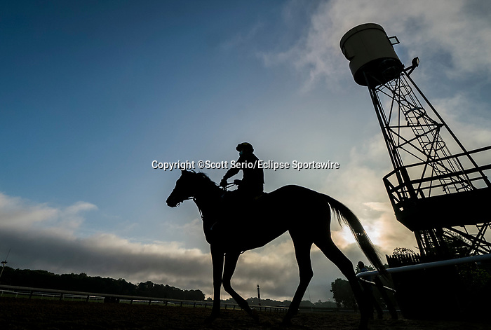June 19, 2020: Horses come on to the track to train just after sunrise as horses prepare for the Belmont Stakes at Belmont Park in Elmont, New York. Scott Serio/Eclipse Sportswire/CSM