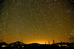 The big dipper over the Sonoran Desert at Organ Pipe National Monument, Arizona, just north of the border with Mexico.