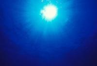 Underwater ocean scene, w/ sun