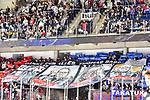 Nuernberg Ice Tigers - Eisbaeren Berlin 23.02.2020