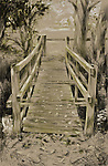 Wooden bridge across river in woodland in Thornham Parva, Suffolk, England